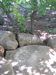 Augie Grave