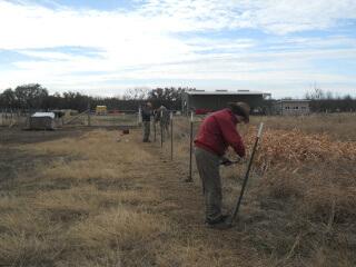 Straitening Goat Fencing
