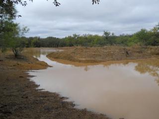 Drought 2011 Oct Rain Pond