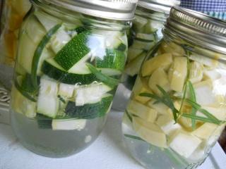 Lacto-Fermenting Squash and Zucchini