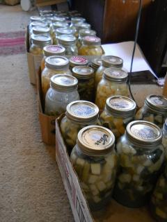 Lacto-Fermenting Garden Produce