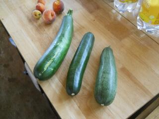 Still More Zucchini