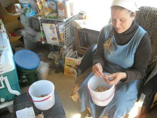 Sue Pealing Garlic Cloves