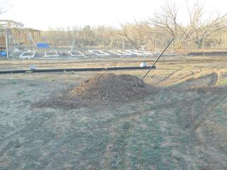 First Pile of Mulch for Garden 2 Facing Garden 1
