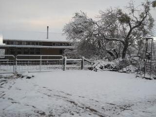 House & Snow