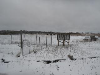 December 2015 Snow 5