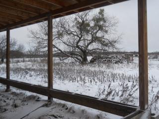 December 2015 Snow 10