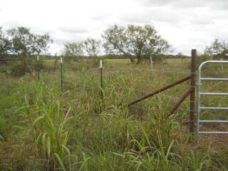 North Field Gateway Diagonal Fence 2